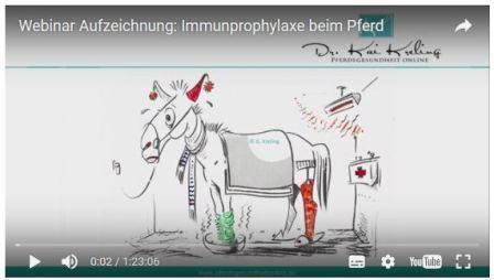 Immunsystem / Infektionsprophylaxe